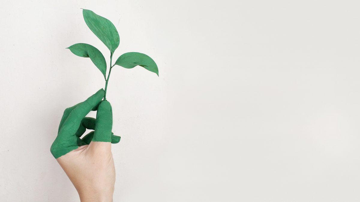 Getting beyond greenwashing